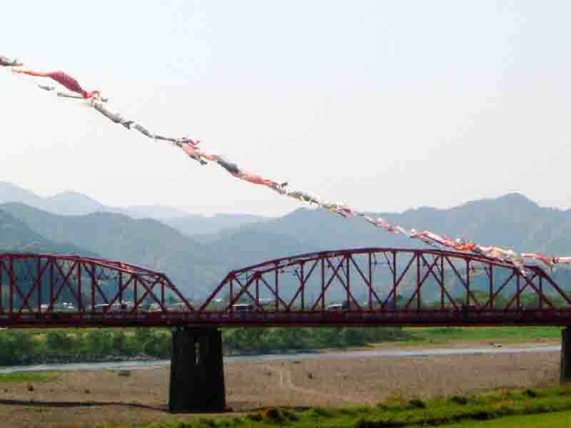20050501-3.jpg