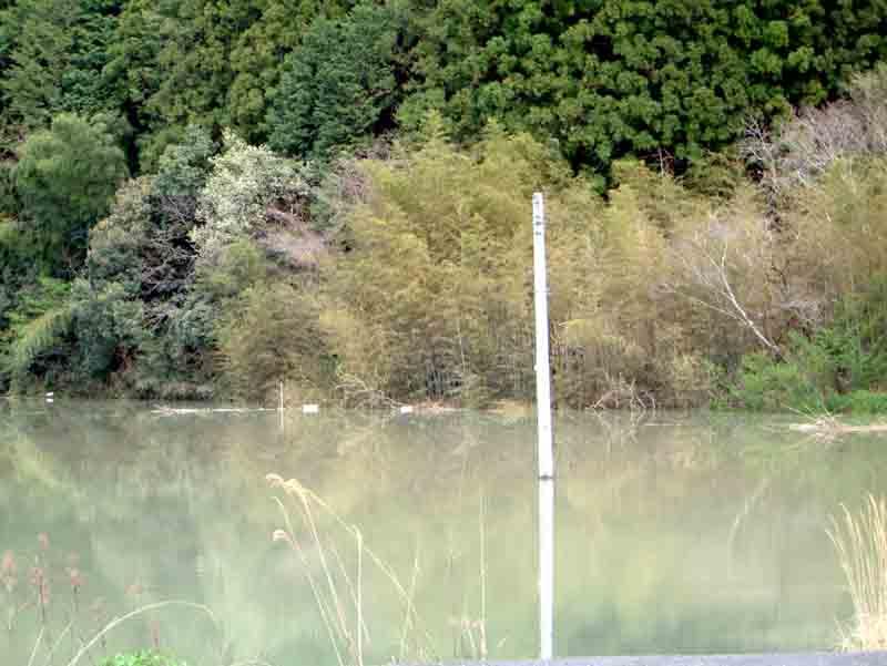 20060411-6.jpg