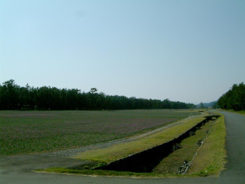 20061102-2.jpg