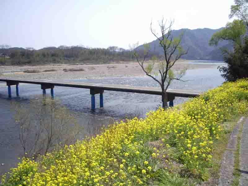 20070323-2.jpg