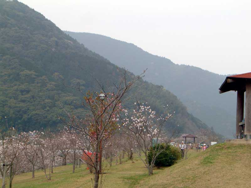20070401-5.jpg