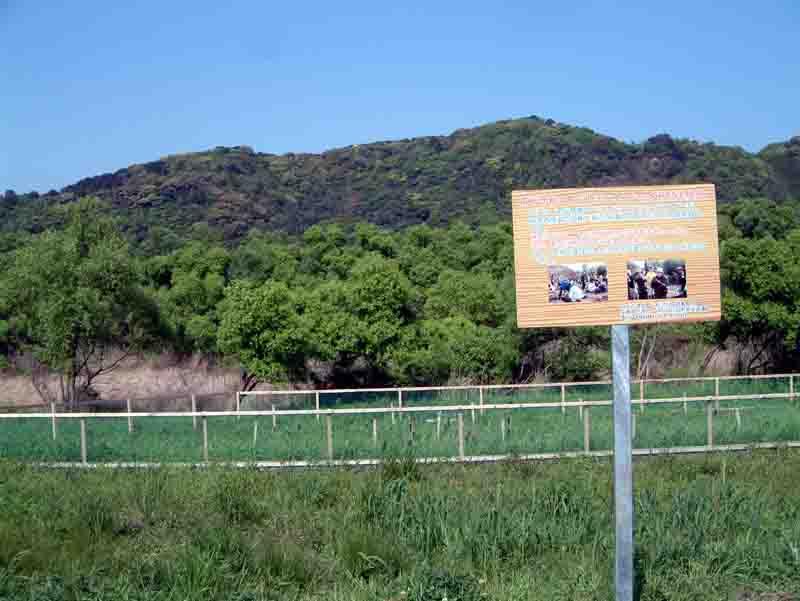 20070423-3.jpg