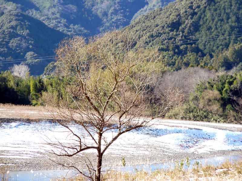 20110102-3.jpg