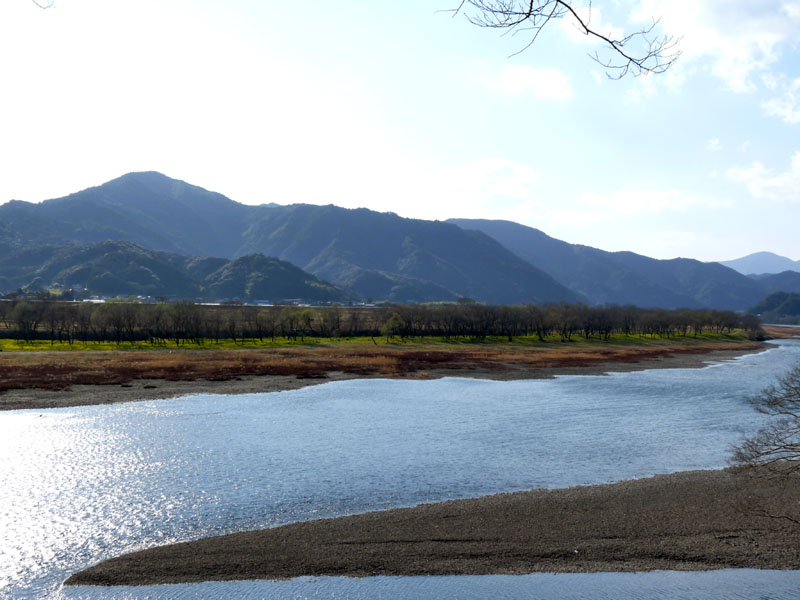 20110310-6.jpg